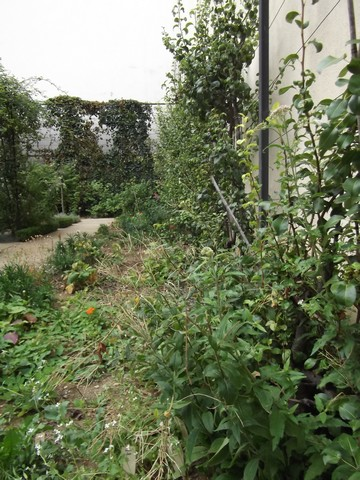 Le jardin partag du clos des blancs manteaux jardinons ensemble - Jardin du clos des blancs manteaux ...